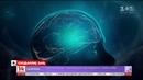 Вчені встановили прямий зв'язок між порами року та розумовими здібностями людини
