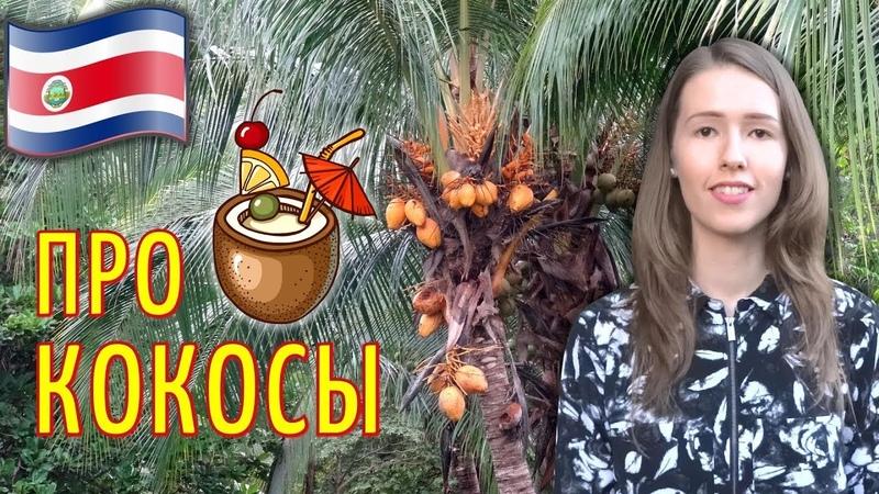 КОСТА РИКА: Как открыть кокос?