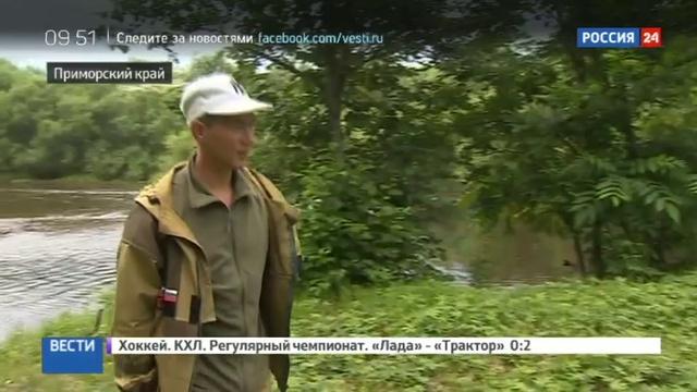 Новости на Россия 24 • В национальном парке Бикин подводят итоги фотоохоты