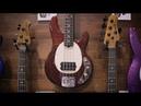 Ernie Ball Music Man: Short Scale StingRay Bass Unveil NAMM 2019