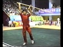 MUST SEE - The Prince Of Wushu - Yuan Wen Qing - Awesome