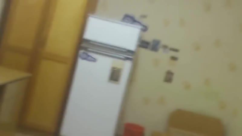 Что будет если засунуть петарду в холодильник