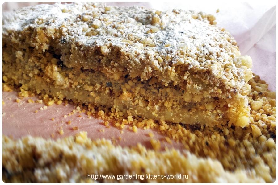 Тортик «Дачный насыпной», без выпечки