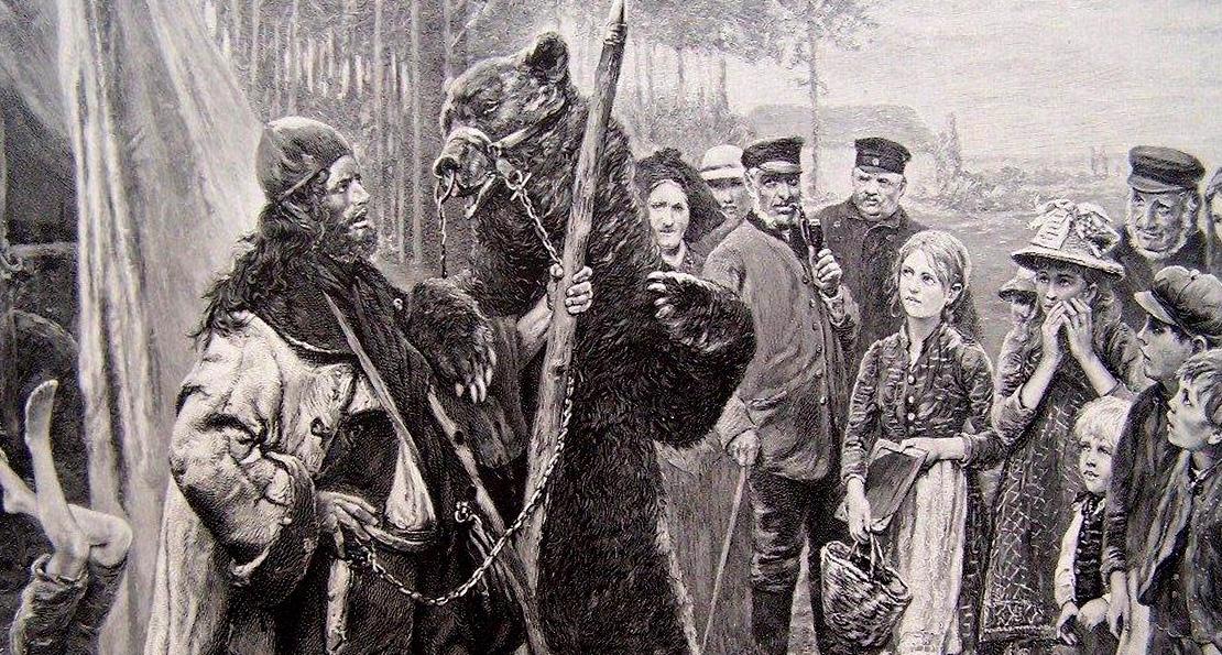 Медведя водят
