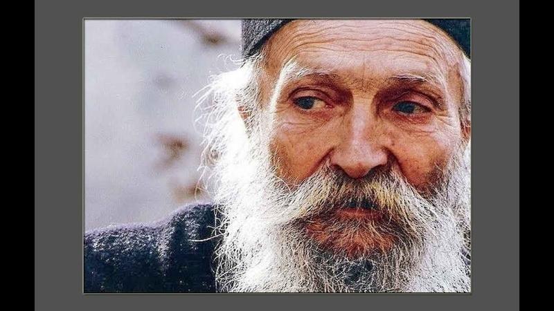 Как спасаться христианам в XXI веке Архимандрит Фаддей Витовницкий