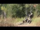Масштабные антитеррористические учения спецназа прошли под Самарой видео