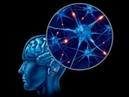 Влияние сознания на реальность.Материализация в физическом пространстве.