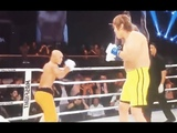 The Best of Shaolin Kung Fu vs MMA fighter Don't Mess With Kung Fu Masters