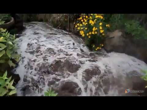 Чем травят реку в Демьяново Кировской области (2016)