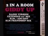2 IN A ROOM - GIDDY UP (Extended Mix ) 1995