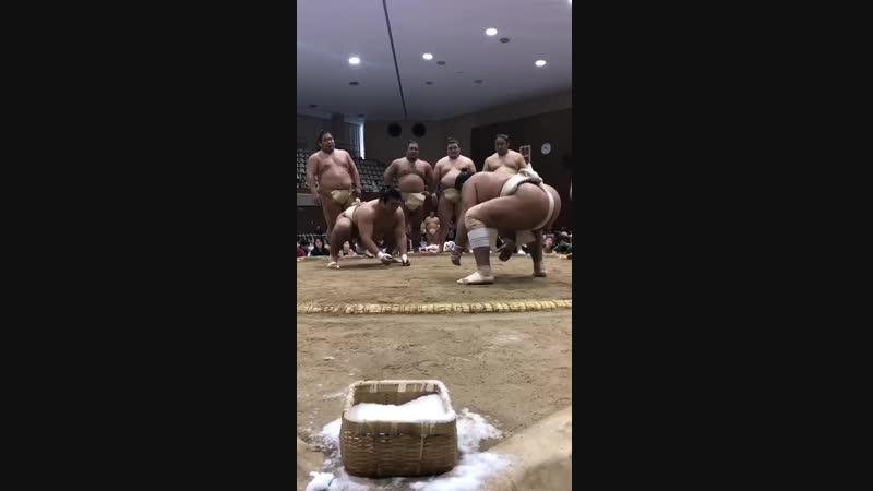 秋巡業倉吉市十両力士による稽古明生と東龍sumo 相撲