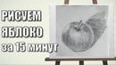 Тоновый Набросок Яблока - 15 минут