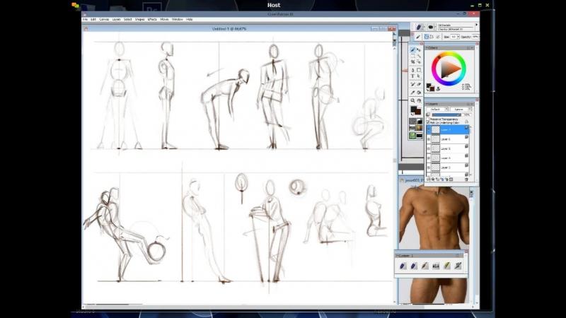6. Пропорции тела 4