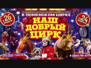 Наш добрый цирк в Тюменском цирке