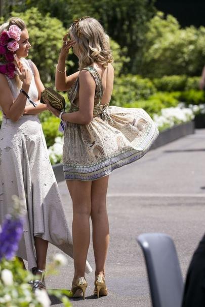 На Дне Леди австралийские барышни выглядели поприличнее британок В австралийском городе Мельбурн прошел приуроченный к скачкам День Леди. Мероприятие носит такое название, поскольку в нем
