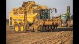 ROPA Tiger 6 x2 &amp Fendt 936s4 mit Transbordeur Bergman RRW 500 a l'arrachage de bettrave 2018