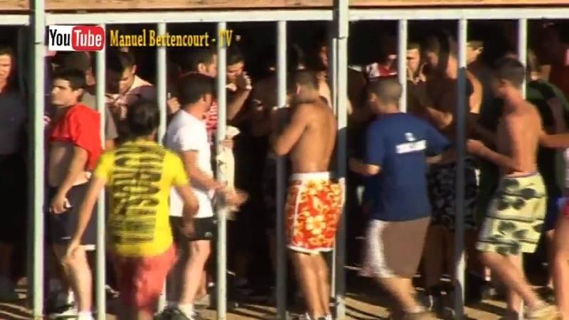 RIR COM MARRADAS in Spain (bulls funny video 3) by Manuel Bettencourt TV