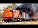 Top 10 Diesel Trains Cold Start