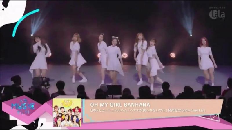 · Press-Media · 180916 · OH MY GIRL · Репортаж о дебютном японском шоукейсе Oh My Girl на канале Lala TV ·