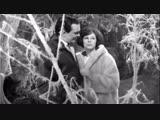 Муслим Магомаев и Лариса Мондрус - Разговор Птиц (1966)