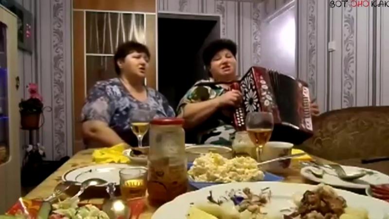 Музыкальная пауза Голубка ВоК