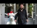Ген человека в козах Герман Стерлигов
