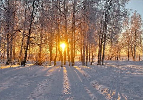23 февраля в народном календаре - Прохор Весновей, Харлампий.