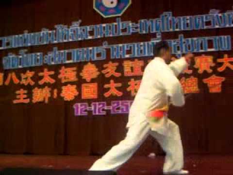 Yang Shi Taiji Dao 13 Shi Master Zhao Youbin 赵幼斌