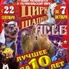 Цирк-шапито «Алле» официальная страница