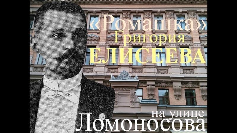 Ромашка Елисеева на ул. Ломоносова