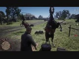 My horse just helped me against a grifever. Red Dead Online