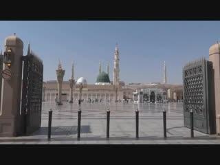 قصيدة «مولد النور» لـ «محمد بن مصوي العتيبي» في مدح الرسول ﷺ _ أداء - ظفر النتيف.mp4