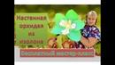 МК Ростовые цветы Настенная орхидея из изолона Orchid of isolon foam eva