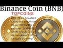 TOPCOINS КРАН монет BINANCE coin BNB каждые 15 мин