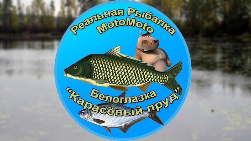 Как поймать Белоглазку на Карасёвом пруду | Реальная рыбалка