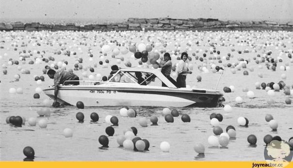 Полтора миллиона шариков, благие намерения и ужасающие последствия.