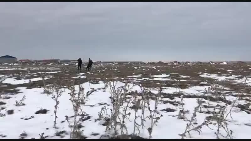 Konya Akıncılar'dan TERMİNATÖR ARAP vs Cihanbeyli Taşpınar'dan TANGO
