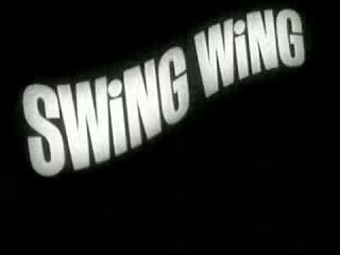 RETRO COMMERCIAL-Toys-Swing Wing