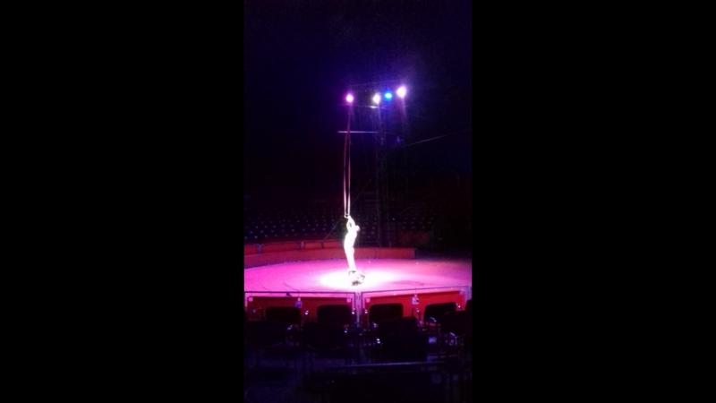 Цирк кобзов