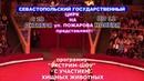 Севастополь Экстрим шоу