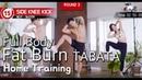 E.27 4분만에 집에서 칼로리 태우기 ㅣ The Best FAT-Burning Home Workout in 4min
