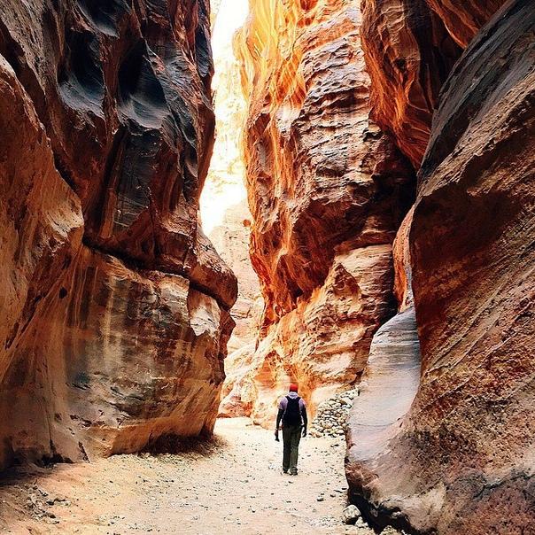 Тур в Иорданию на 7 ночей с завтраками за 14100 с человека в декабре