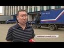 На сортировочной станции «Ярославля-Главного» застрял лось