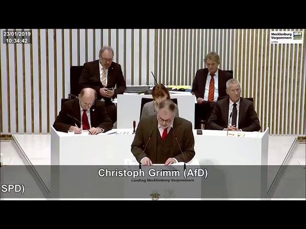 Christoph Grimm AfD. Brüssel fördert nicht den Frieden und Wohlstand in Europa. 23.01.2019