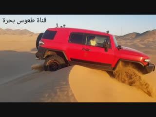 وبعدين مع الاف جي هههههه
