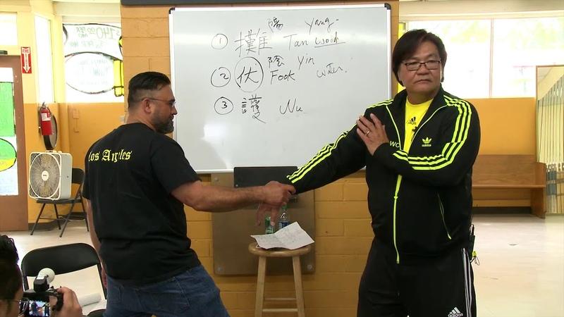 Sifu Gary Lam Wing Chun 18 Hands Actions ~ Wu Sau