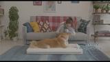Alina Zagitova - airweave - рекламный ролик
