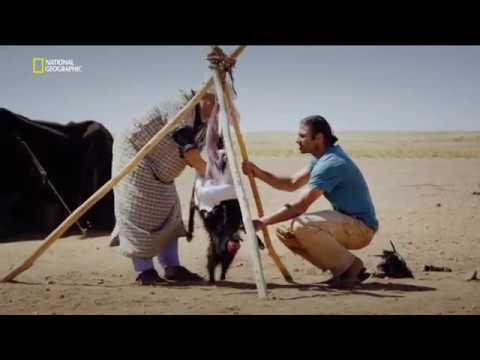 Инстинкт выживания Выжженная земля National Geographic