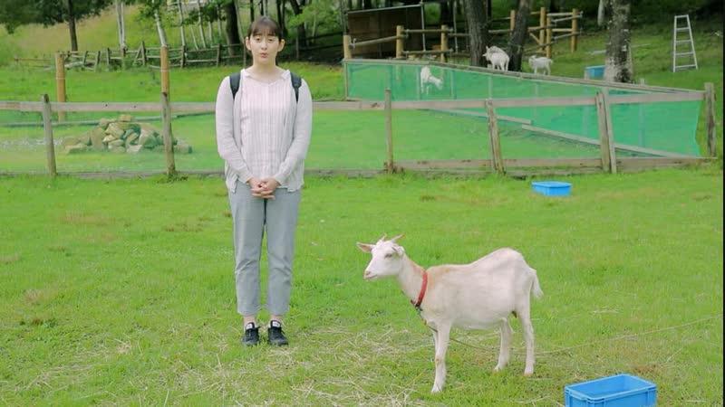 Akari Hayami - Iju wa Gift 4 (nagoyatv) 20181112