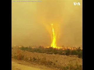 Огненное торнадо во время лесного пожара в Канаде